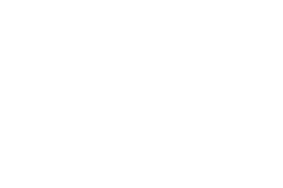 13 to 1 Student to Faculty Ratio
